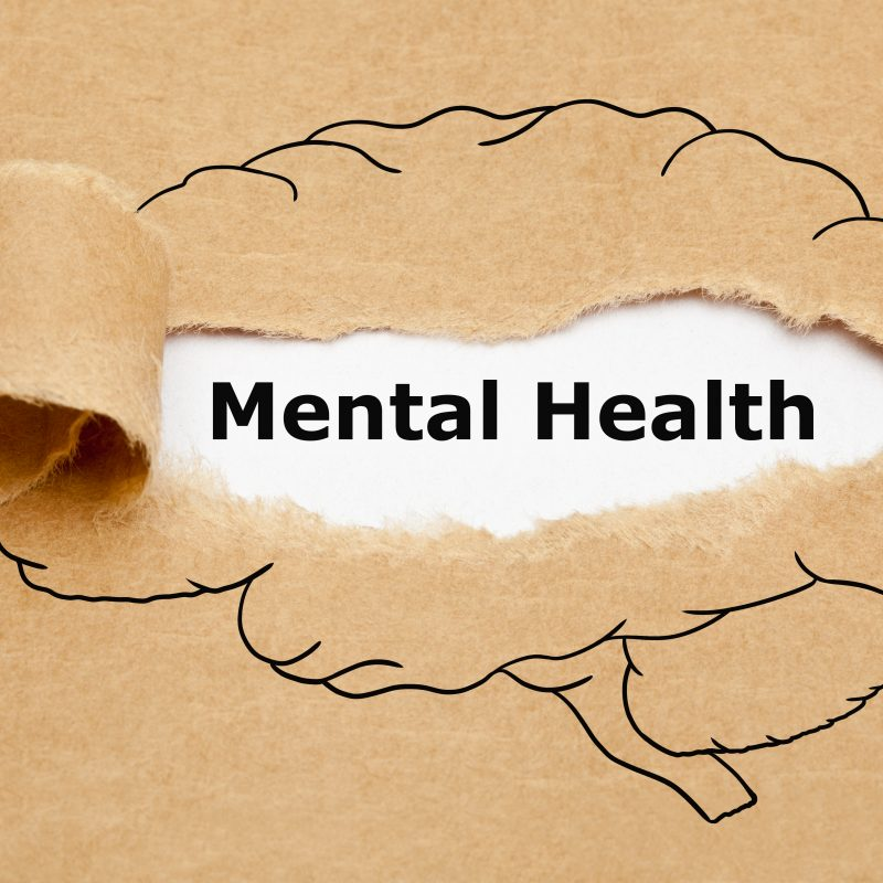 Graphic of the human brain with the phrase mental health layered over top the crawing.